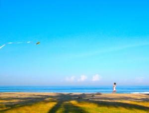 Bali Kite Flyer