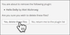 blogging on wordpress delete files