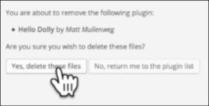 blogging on wordpress delete files