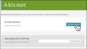 starting with wordpress akismet api key
