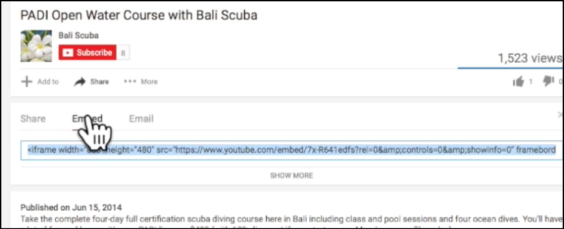 embed youtube code for video in wordpress