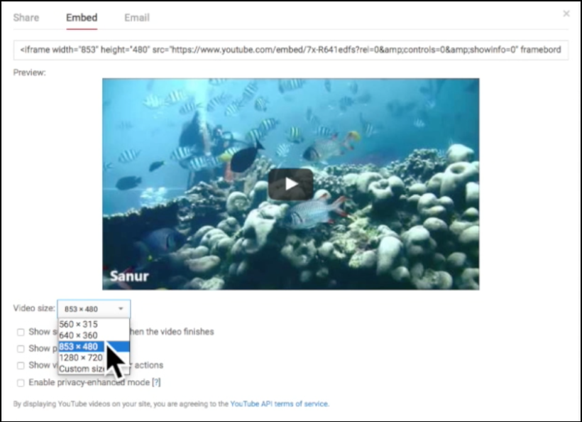 changing video size for embed code