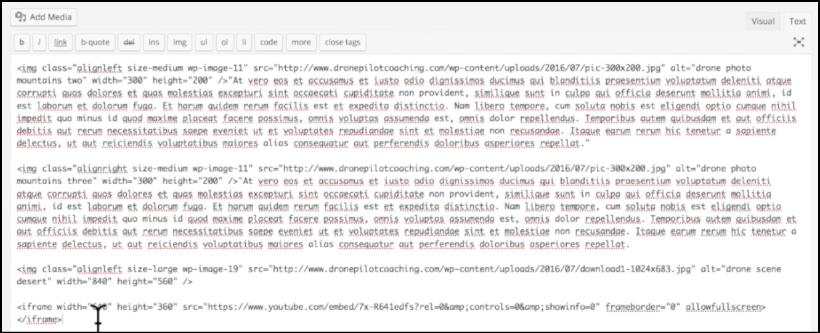 text editor in wordpress example