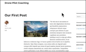 first post wordpress screenshot