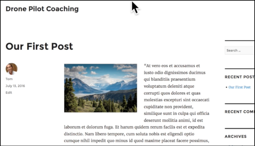 wordpress theme example post1