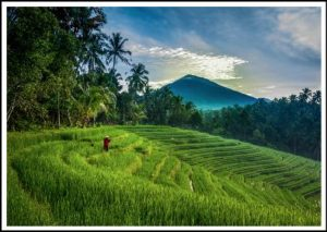 cost of living in Bali guide