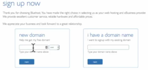 Start a blog Bluehost choose domain